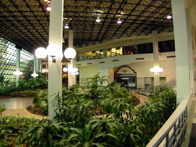 Movies at Prudential Town Center - PLANTS