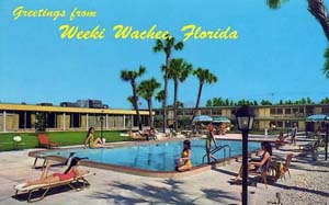 WEEKI WACHEE JUST FOR FUN!